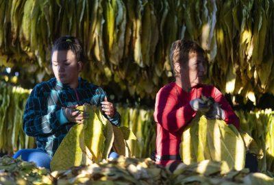 明年最低工資將提高到 200,000 福林